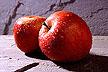 manzanas48jy